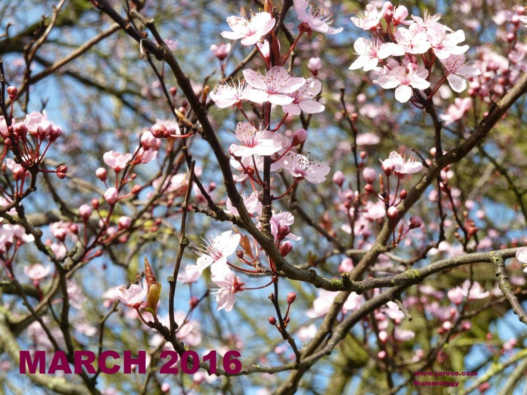 March Numerology 2016